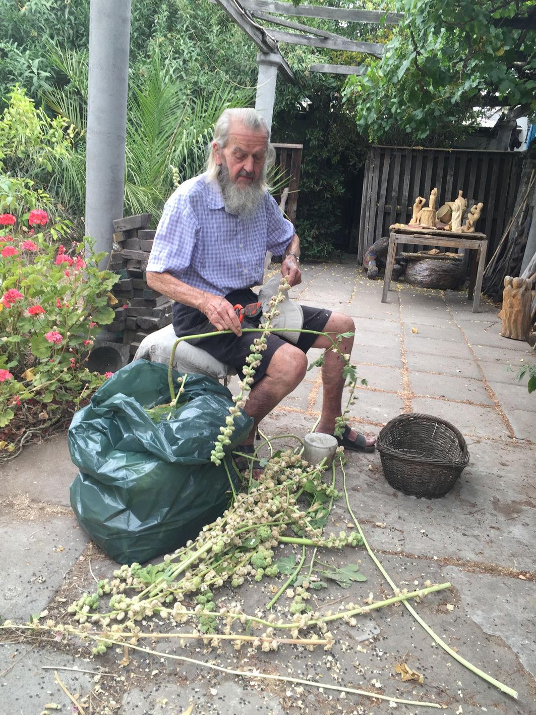 Gartenarbeit mit Hintergrund Arbeitstisch