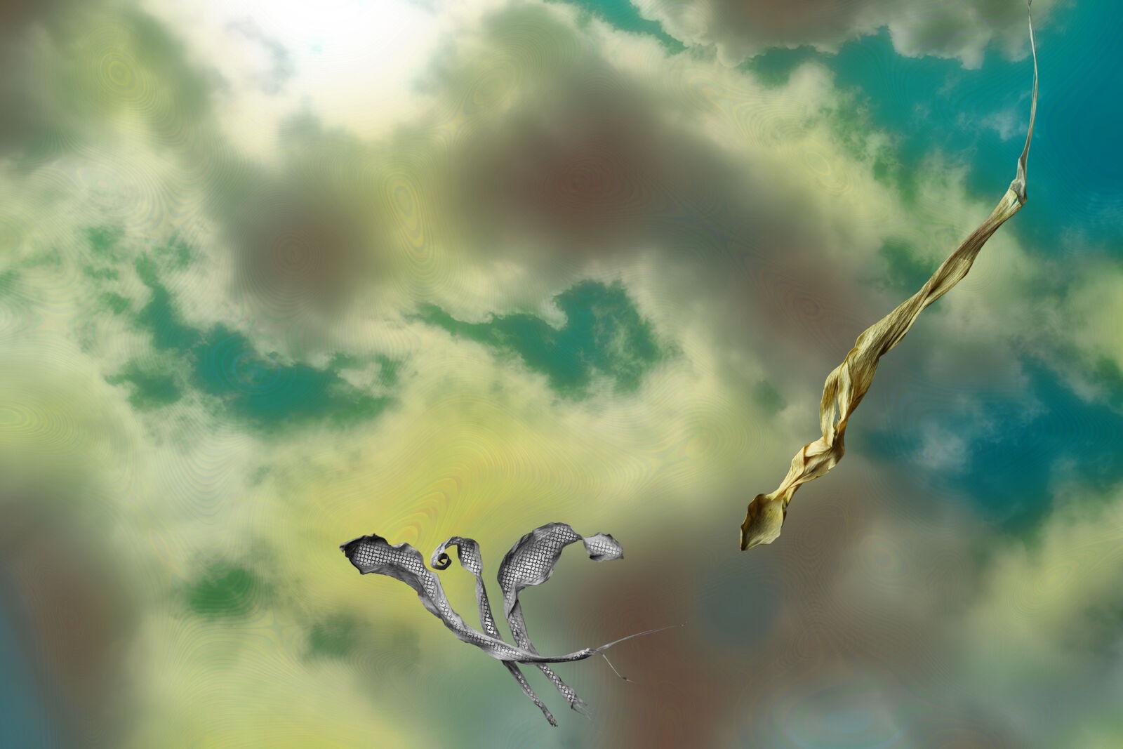 Himmel auf Erden  II