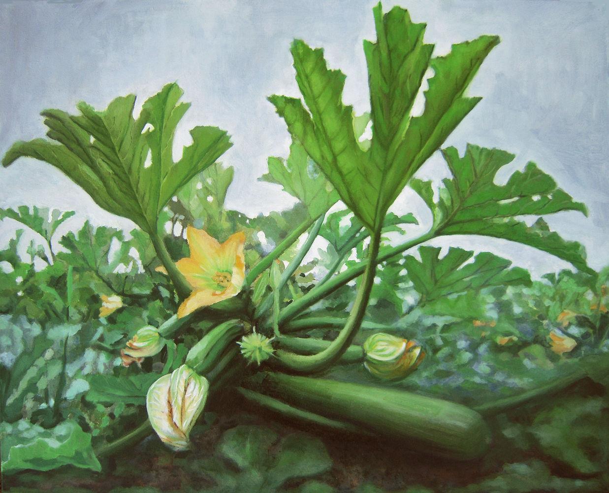 Zucchetti, 2011, Öl auf Leinwand, 76 x 95 cm