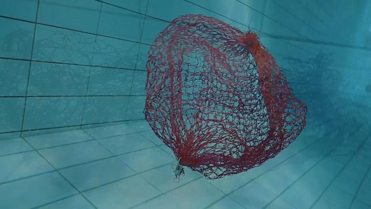 Standbild von Ghost Nets