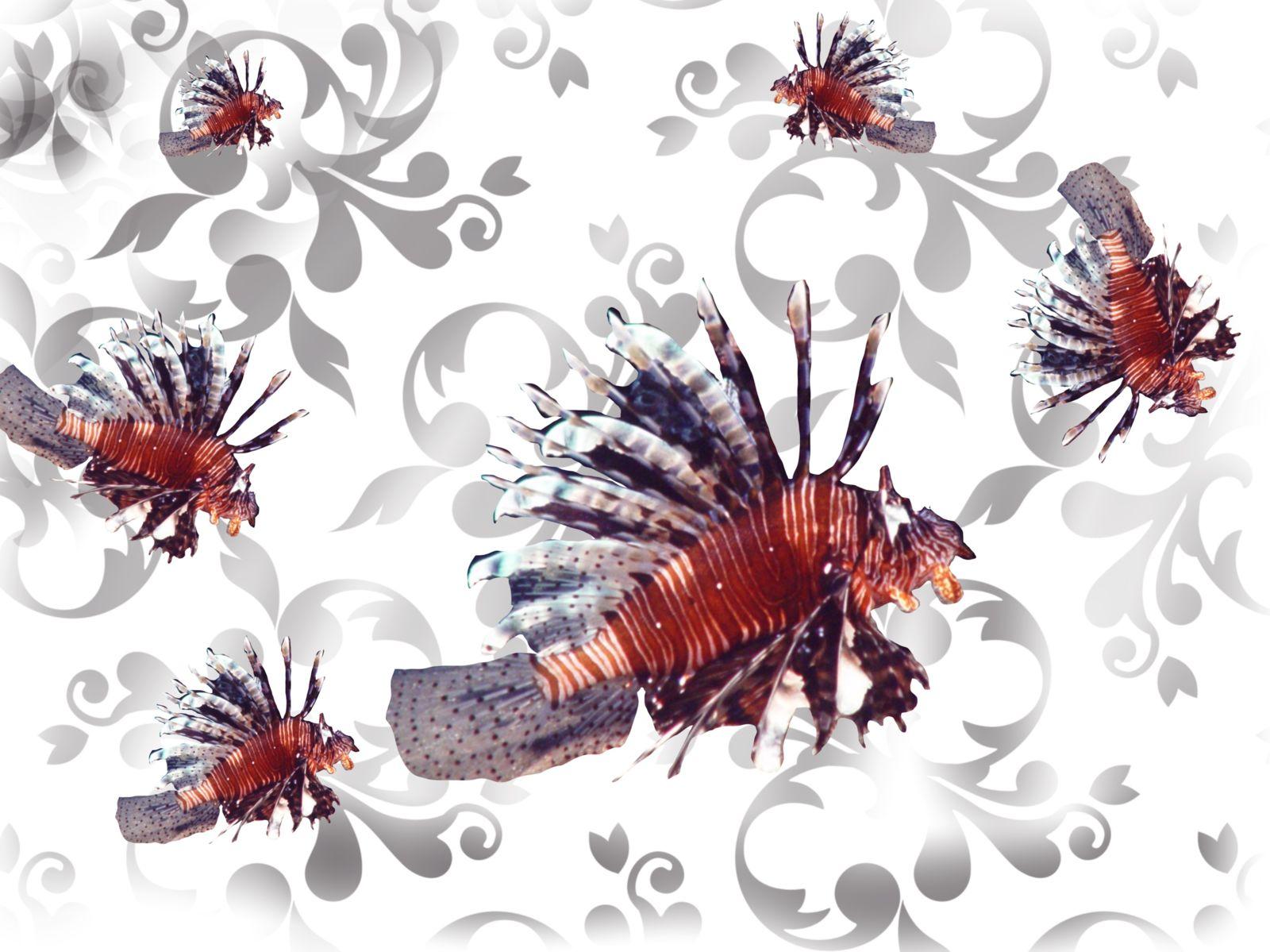 Rotfeuerfisch auf digitalen Blüten