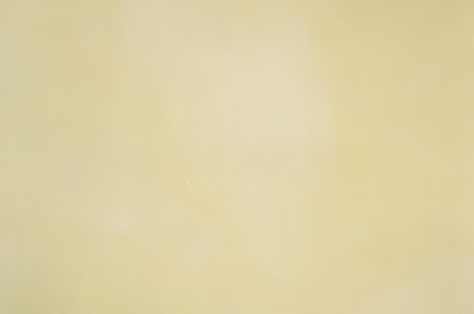 Birnbaumlaub monochrom